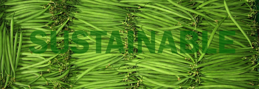the word 'sustainable' over an image of green beans.